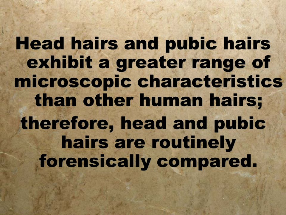 therefore, head and pubic hairs are routinely forensically compared.