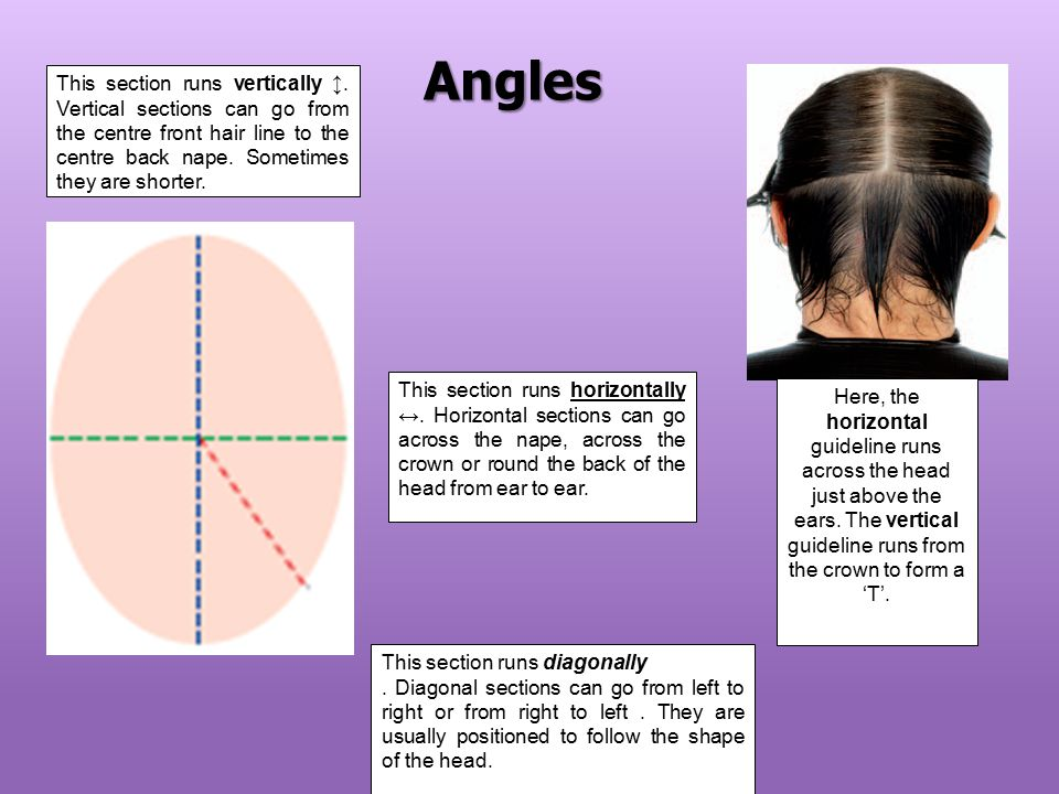 Angles This section runs vertically ↕. Vertical sections can go from the centre front hair line to the centre back nape. Sometimes they are shorter.