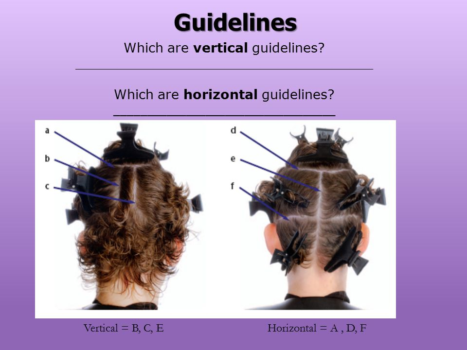 Guidelines Which are vertical guidelines ____________________________________. Which are horizontal guidelines __________________________________.