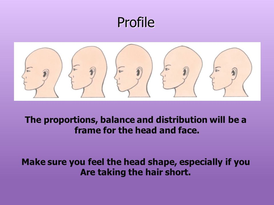 Profile The proportions, balance and distribution will be a