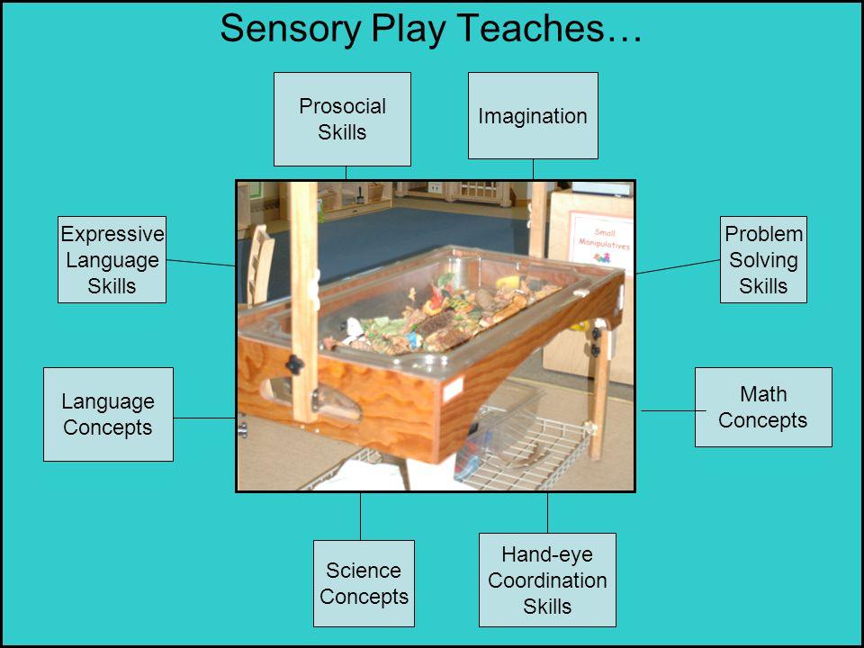 Sensory Play Teaches… Prosocial Skills Imagination Expressive Language