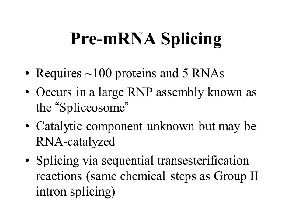 Pre-mRNA Splicing Requires ~100 proteins and 5 RNAs