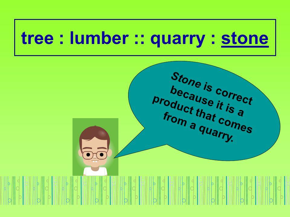 tree : lumber :: quarry : stone