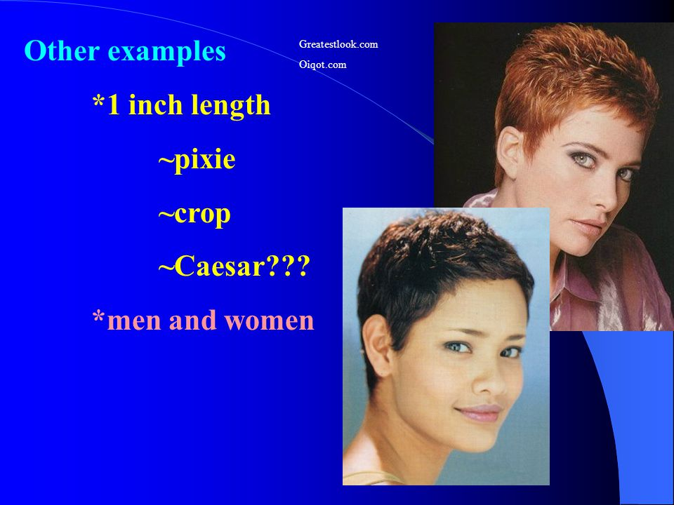 Other examples *1 inch length ~pixie ~crop ~Caesar *men and women