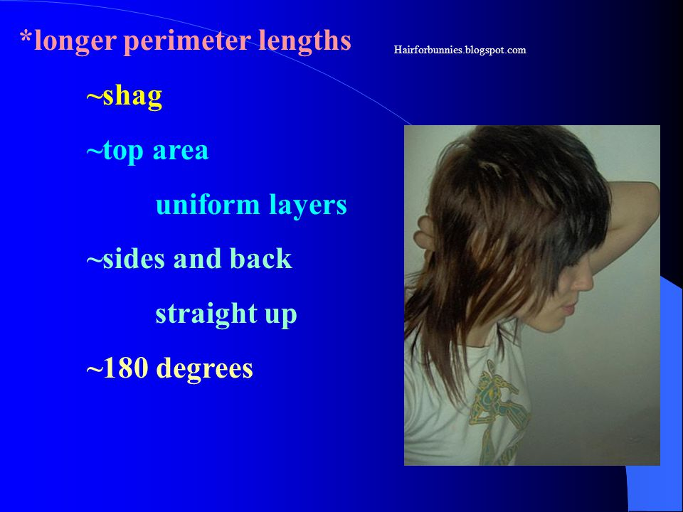 *longer perimeter lengths ~shag ~top area uniform layers