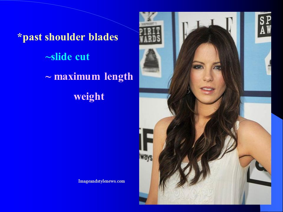 *past shoulder blades ~slide cut ~ maximum length weight