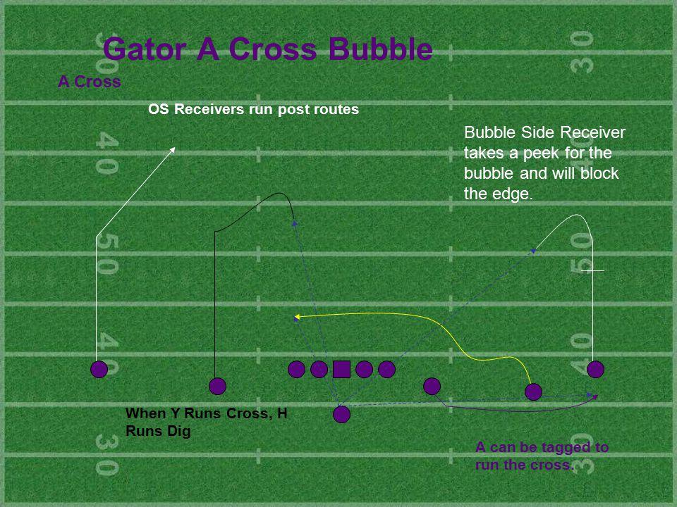 Gator A Cross Bubble A Cross