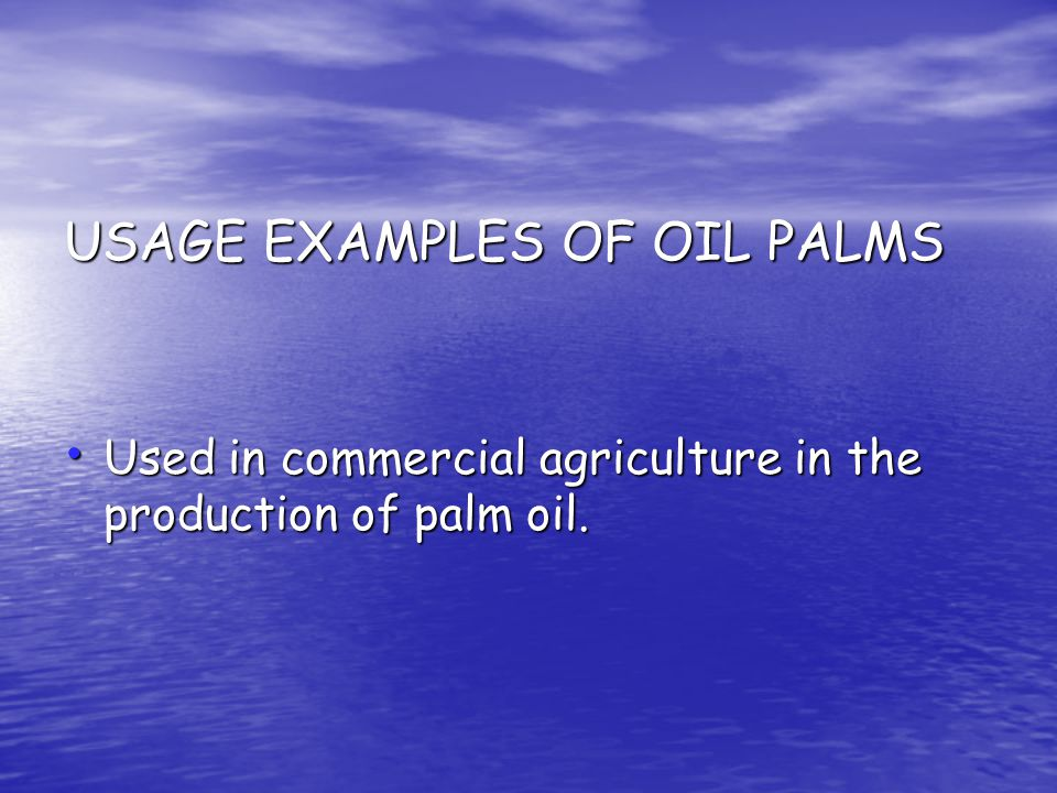 USAGE EXAMPLES OF OIL PALMS