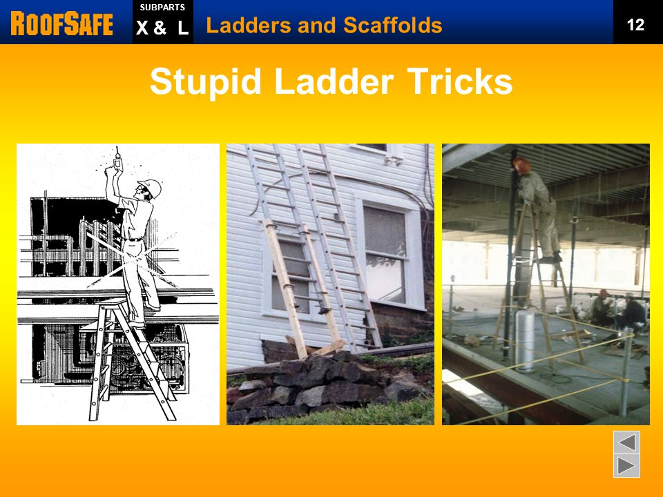 Stupid Ladder Tricks Ladders and Scaffolds X & L 12 Trainer Notes: