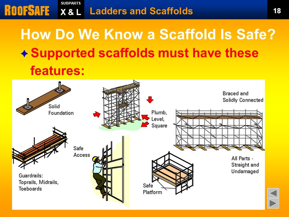 How Do We Know a Scaffold Is Safe