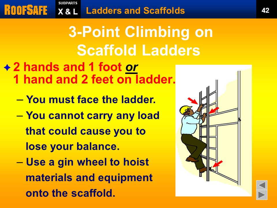 3-Point Climbing on Scaffold Ladders