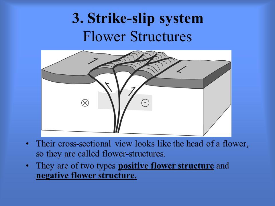 3. Strike-slip system Flower Structures