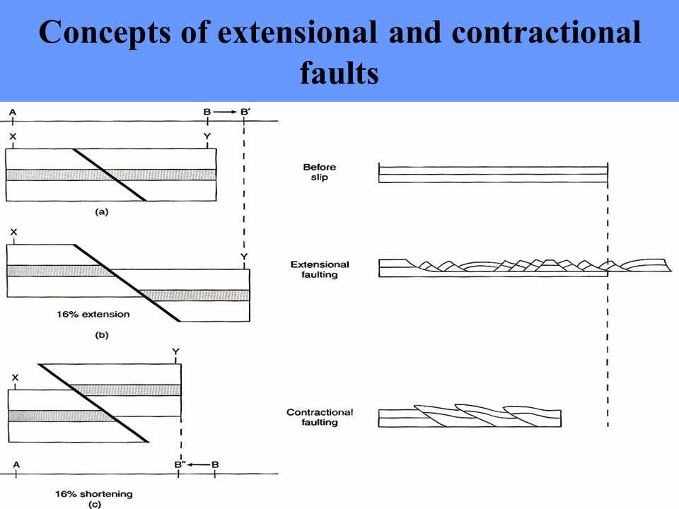 Concepts of extensional and contractional faults