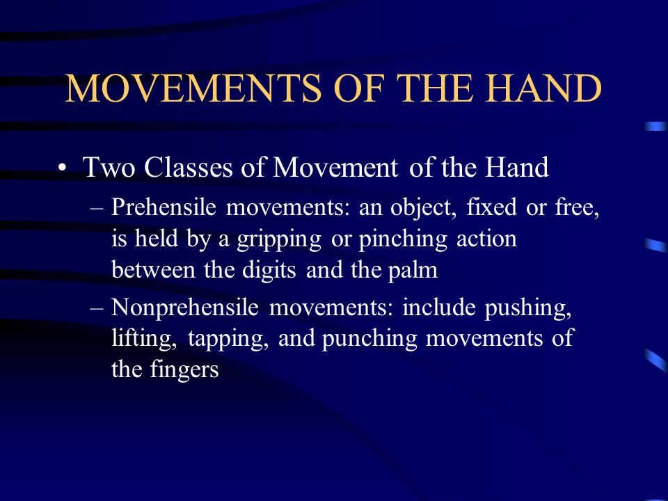 MOVEMENTS OF THE HAND Two Classes of Movement of the Hand