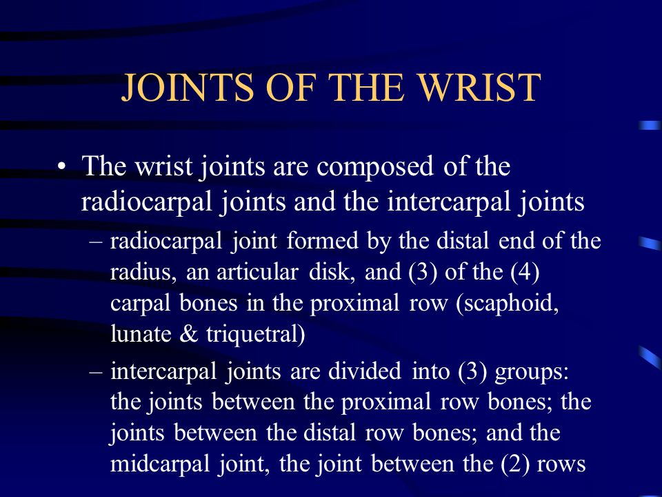 JOINTS OF THE WRIST The wrist joints are composed of the radiocarpal joints and the intercarpal joints.