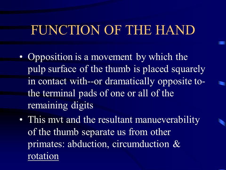 FUNCTION OF THE HAND