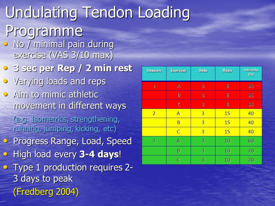 Undulating Tendon Loading Programme