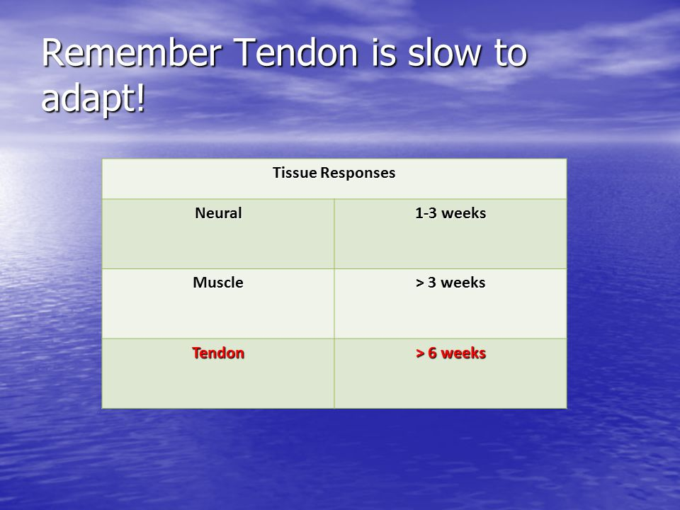Remember Tendon is slow to adapt!