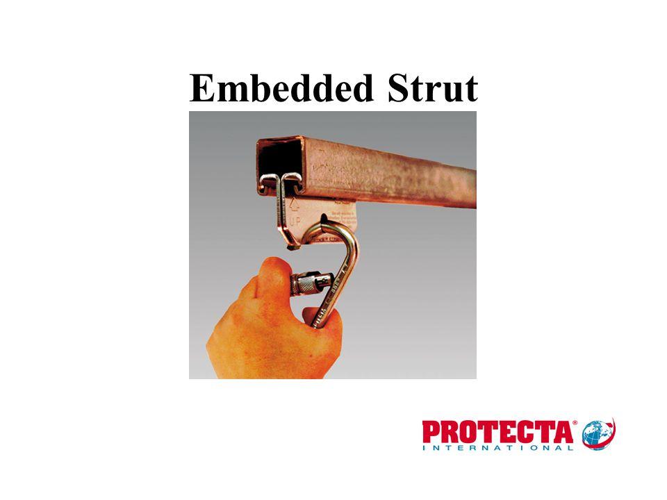 Embedded Strut