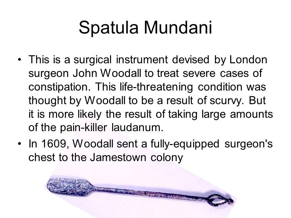 Spatula Mundani