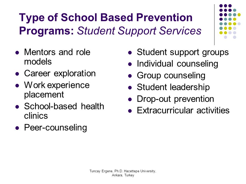 Type of School Based Prevention Programs: Student Support Services