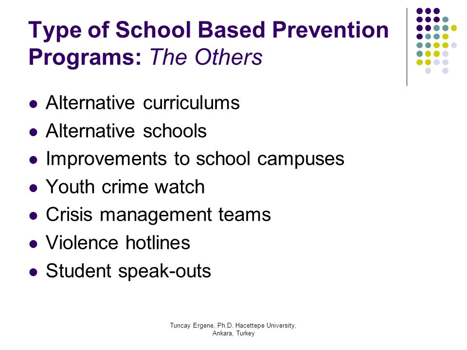 Type of School Based Prevention Programs: The Others