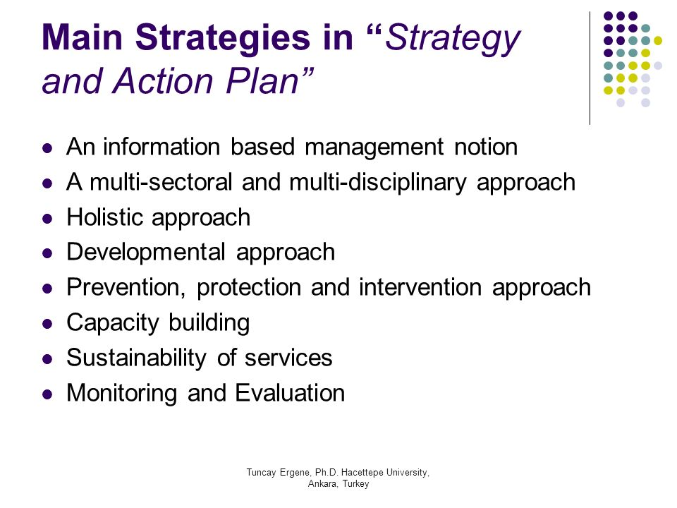 Main Strategies in Strategy and Action Plan