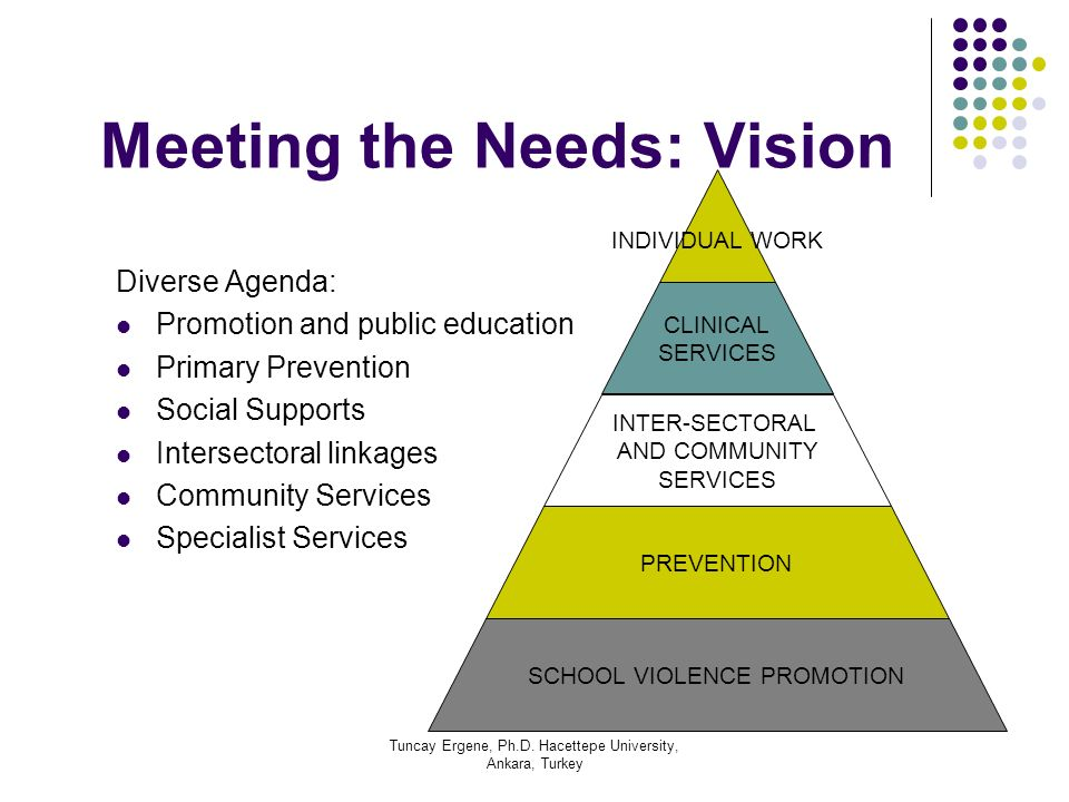 Meeting the Needs: Vision