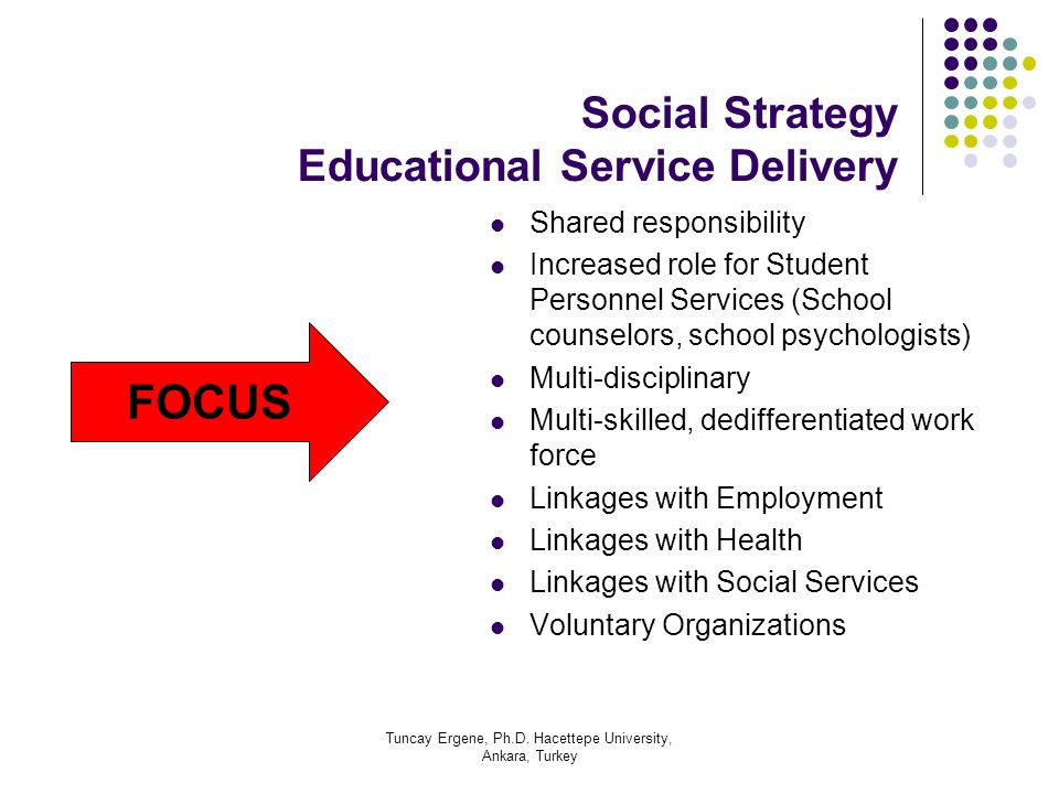 Social Strategy Educational Service Delivery