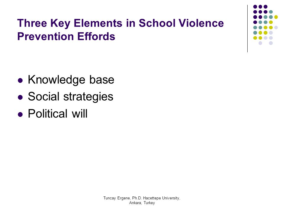 Three Key Elements in School Violence Prevention Effords