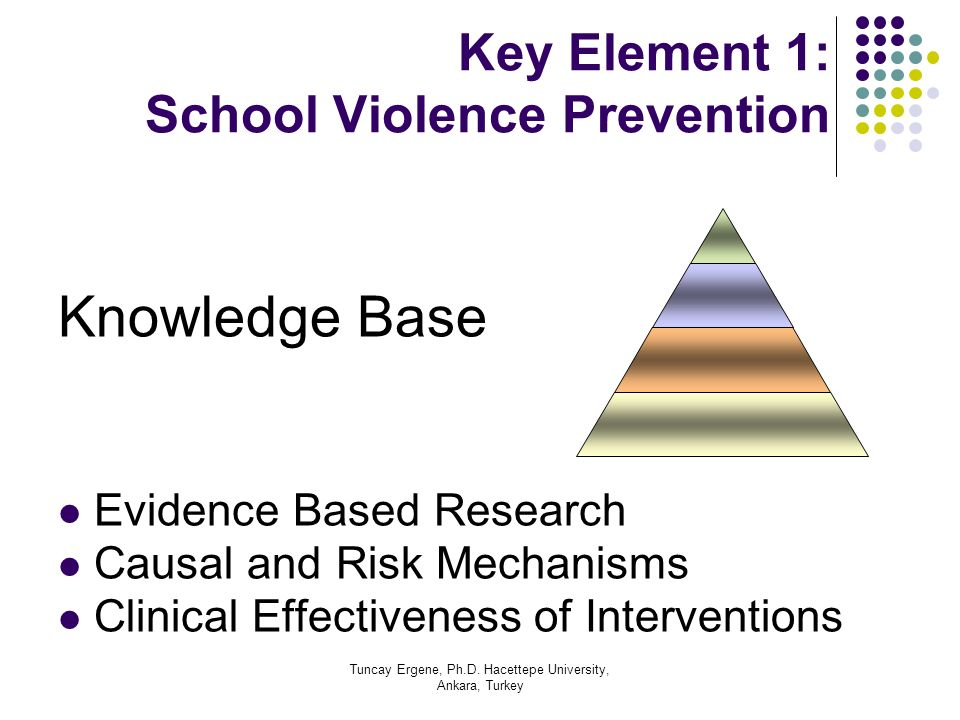 Key Element 1: School Violence Prevention