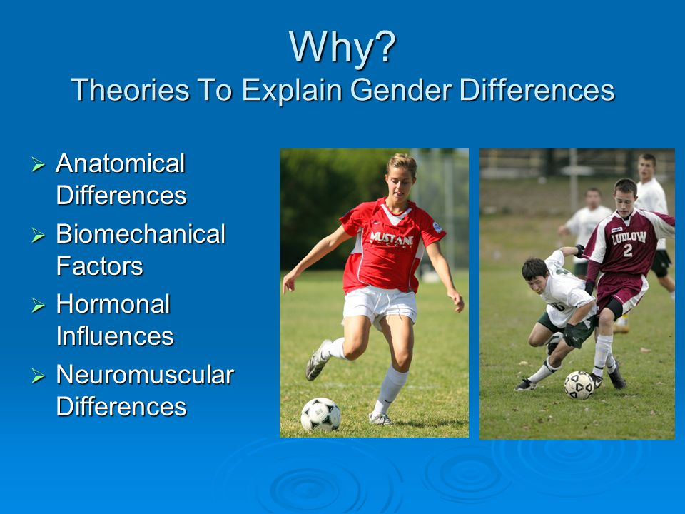 Why Theories To Explain Gender Differences