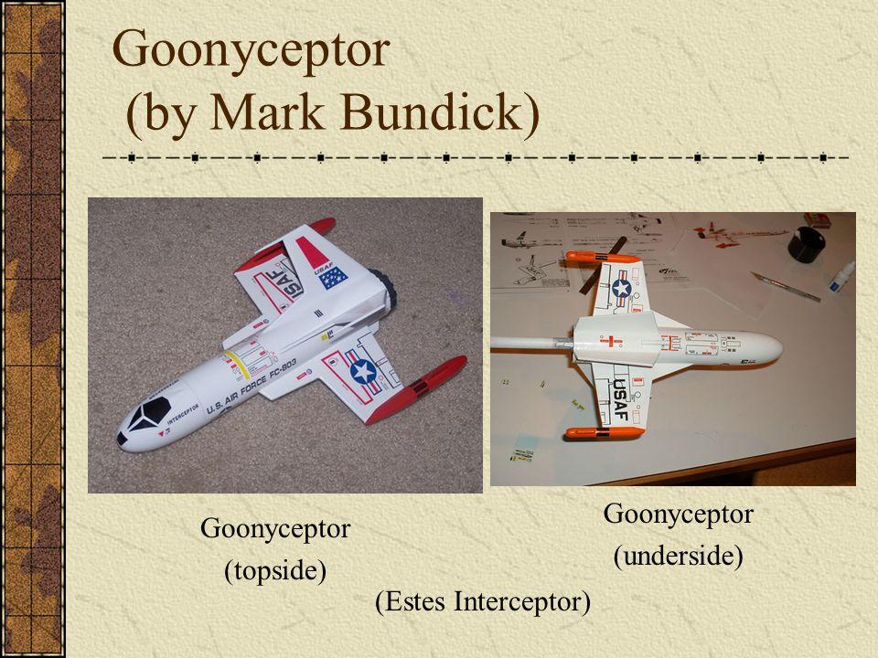 Goonyceptor (by Mark Bundick)