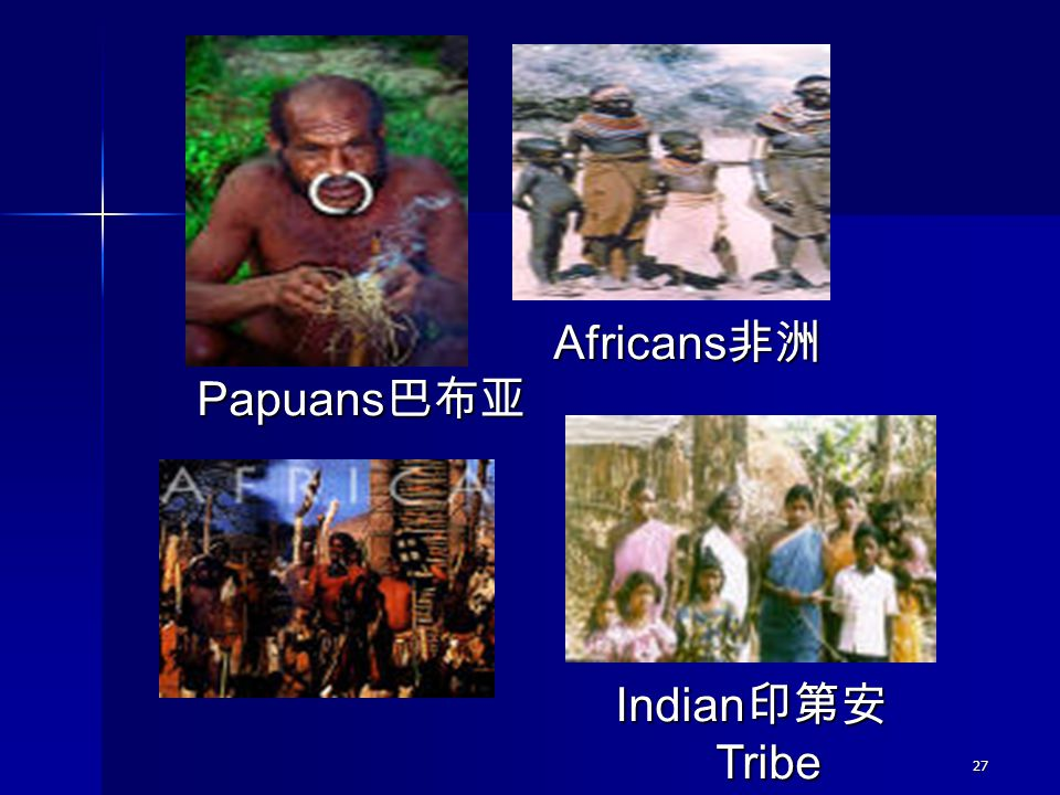 Africans非洲 Papuans巴布亚 Indian印第安 Tribe 27