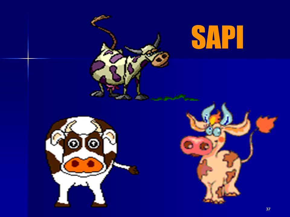 SAPI 37