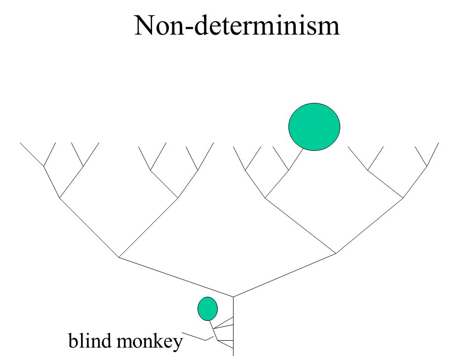 Non-determinism blind monkey