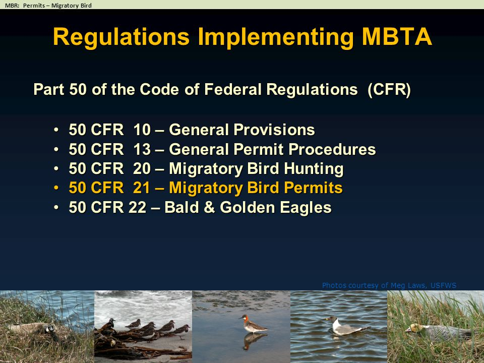 Regulations Implementing MBTA