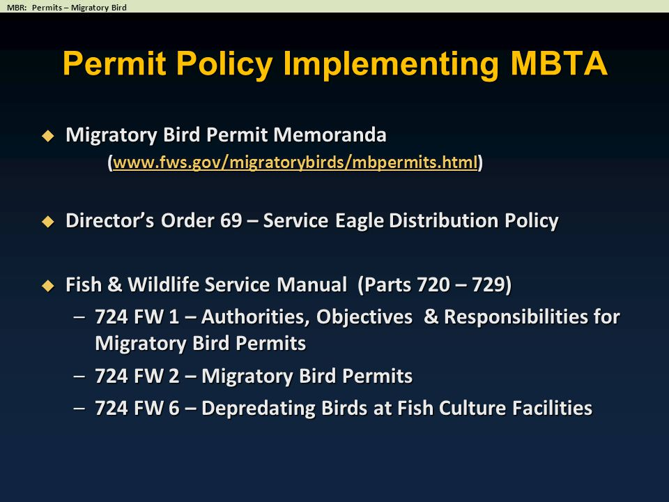 Permit Policy Implementing MBTA