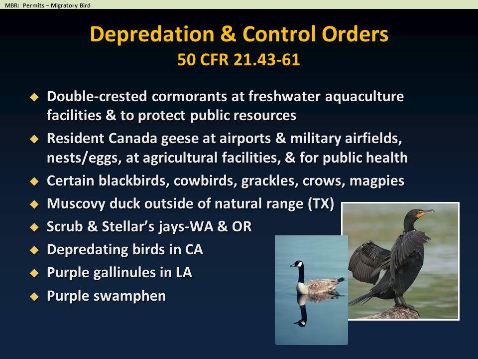 Depredation & Control Orders 50 CFR 21.43-61