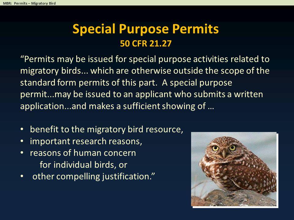 Special Purpose Permits