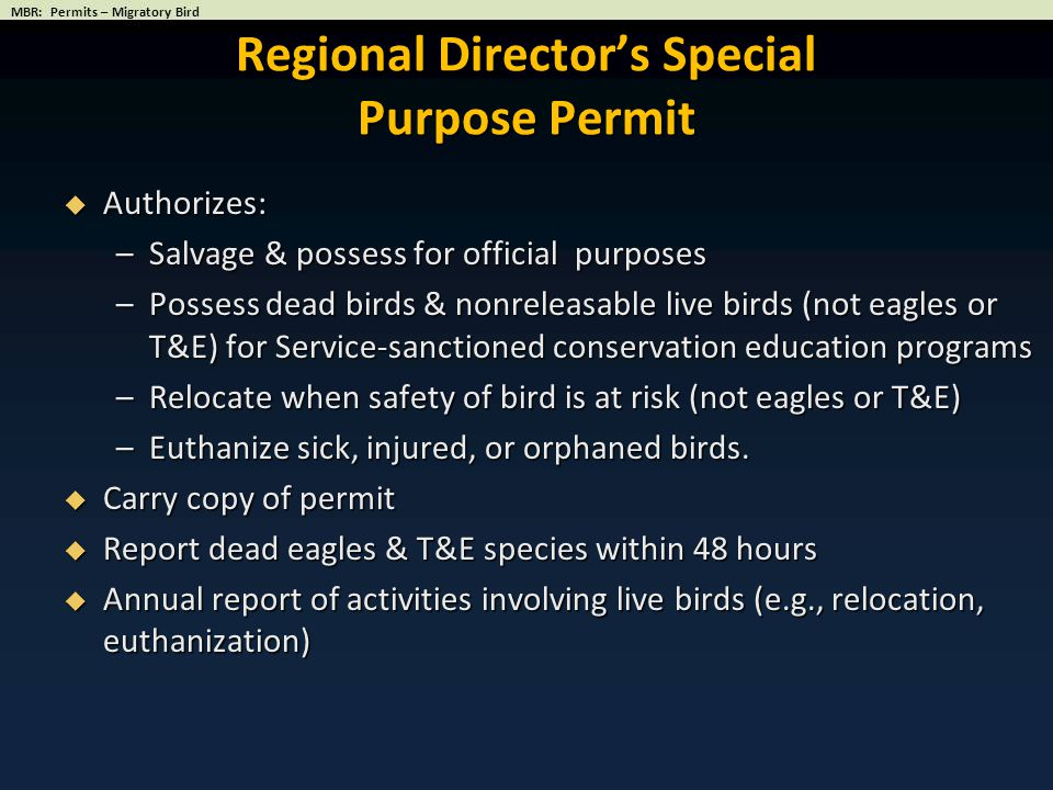 Regional Director's Special Purpose Permit