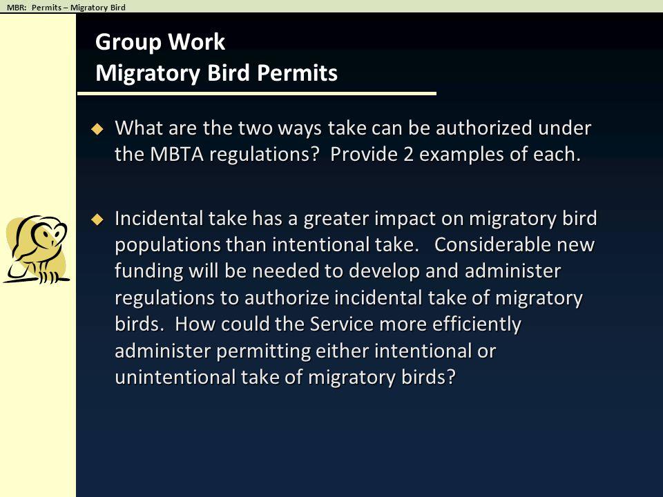 Migratory Bird Permits