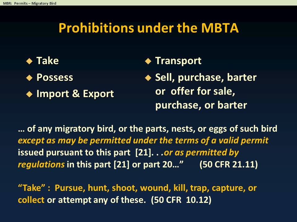 Prohibitions under the MBTA