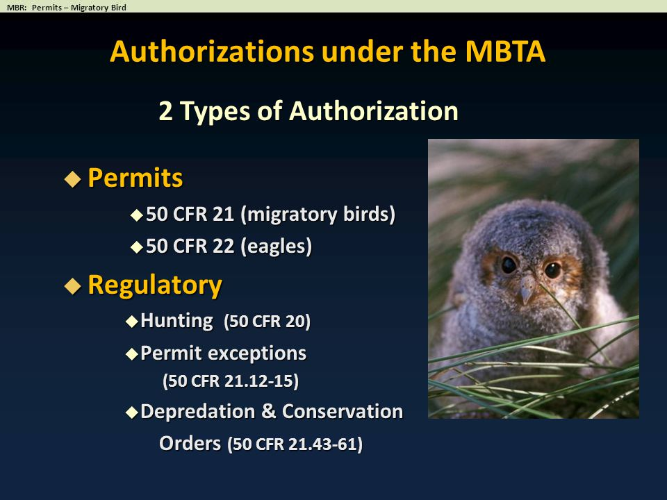 Authorizations under the MBTA 2 Types of Authorization