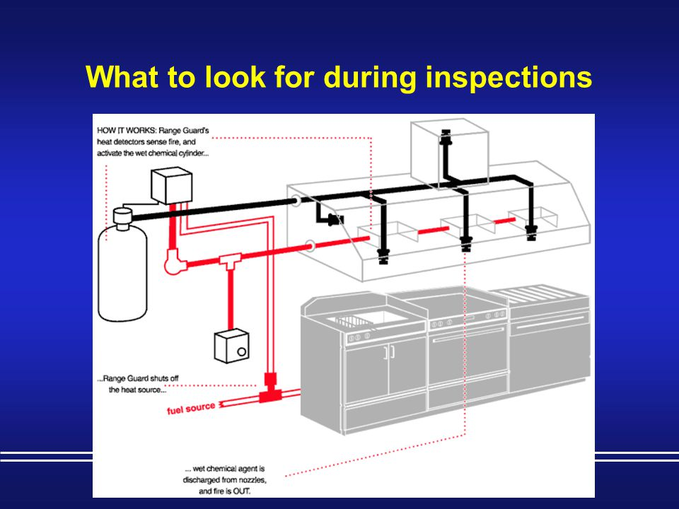 What to look for during inspections
