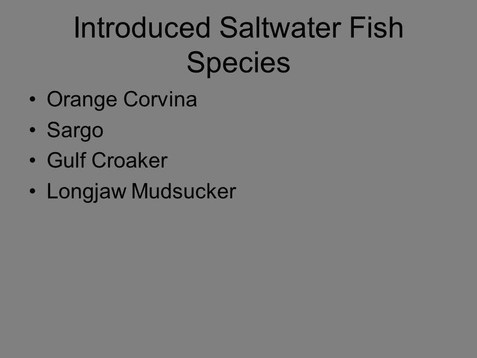 Introduced Saltwater Fish Species