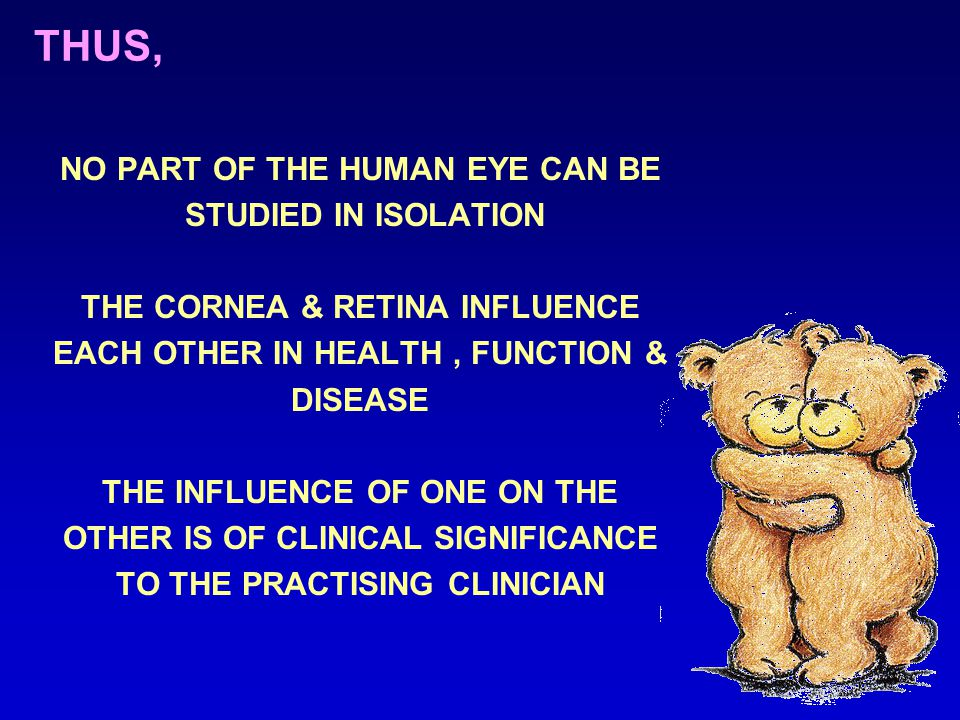 THUS, NO PART OF THE HUMAN EYE CAN BE STUDIED IN ISOLATION