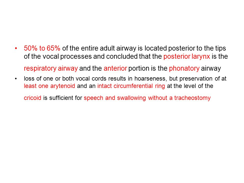 50% to 65% of the entire adult airway is located posterior to the tips of the vocal processes and concluded that the posterior larynx is the respiratory airway and the anterior portion is the phonatory airway
