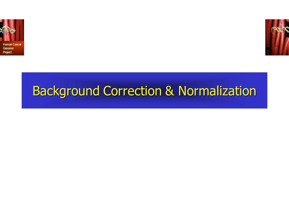 Background Correction & Normalization