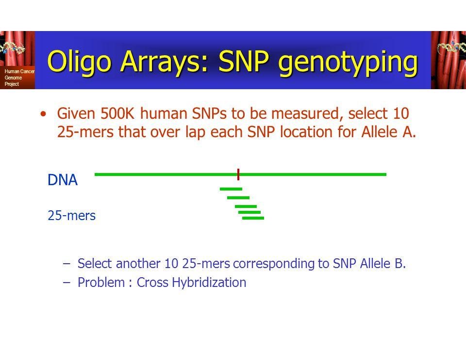 Oligo Arrays: SNP genotyping